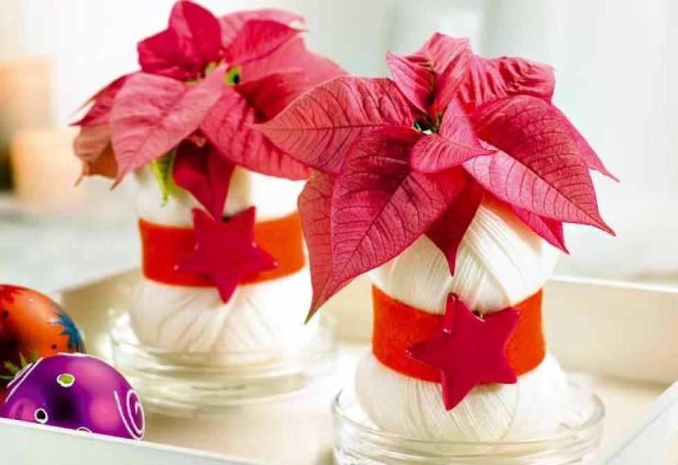 C mo hacer originales maceteros con flores de pascua for Macetas originales para plantas